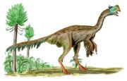 Bild eines Gigantoraptor