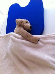 ▲ベッドは温かいです