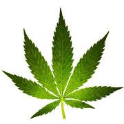 Hanfblatt - Cannabis Leave