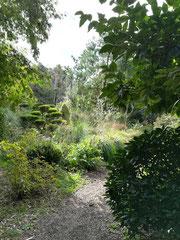 Jardin de Bambou de Planbuisson