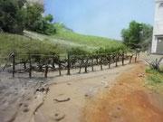 Rang de vigne avant flocage