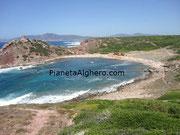 Siamo vicini alle spiagge di Alghero