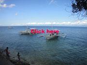 セブ島 モアルボアル
