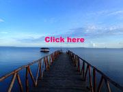 パラワン島 ホンダベイ