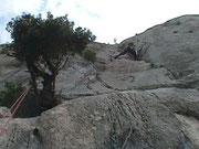 photo-ca.brignoles