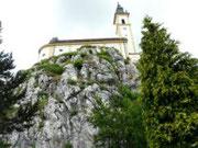 Rosenquarzfelsen in Pleystein