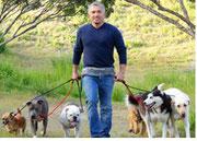 César Millán paseando perros.
