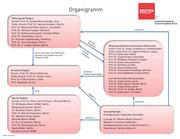 Organigramm der Einstein Stiftung