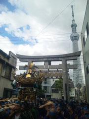 ユーザー投稿写真:いわくら雷人さん〈牛嶋神社大祭・本所一丁目神輿〉