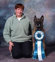 Dog Obedience training Northern NJ