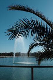 Der Fichtelgebirgshof ein sehr schönes Hotel mit eigenem See und schöner Seeterrasse