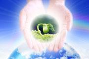 啓示を育てる【自己変容の道2】