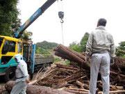 木材の搬出作業