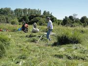 Viele fleissige Helfer räumten das gemähte Gras ab.