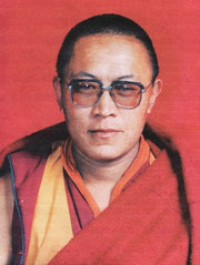 Tulku Tenzin Delek Tinpoche