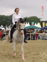 Missouri's Top Hat and Kristabel at the Equitana Open Air