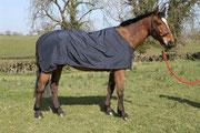 Snuggy Silky Petticoat Rug