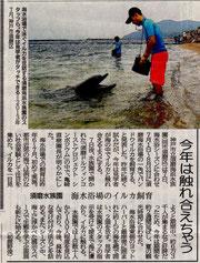 神戸新聞より ※写真は昨年7月の様子
