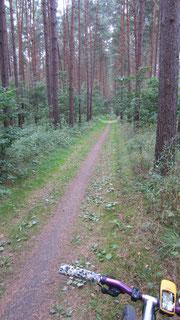 Radweg Natur pur