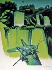 Nicolas Uriburu, L'Insecte et la chute d'Iguazou, 1975, lithographie, 76 x 66 cm, collection artothèque du musée des beaux-arts de Brest