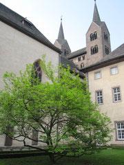 Kloster Corvey, Friedgarten