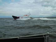 Boot der KRNM vor Urk