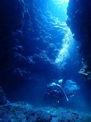 石垣島でのんびりダイビング「ダイナミックな地形」