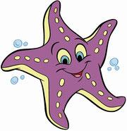 L'étoile de mer !!!