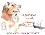 Devenez le partenaire de votre chien!