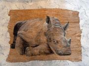 Nashorn-liegend,Pastell
