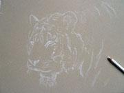Zeichnung Tigerkopf