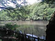 吉祥寺のパワースポット「井の頭公園」