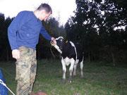 zelten auffer Kuhwiese