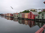 (Trondheim)