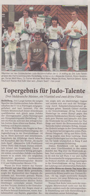 Rhein-Neckar-Zeitung (30.11.2010)