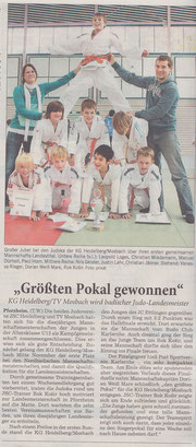 Rhein-Neckar-Zeitung (14.12.2010)