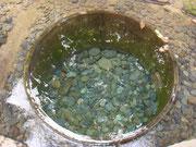 「キヨマサノ井戸」らしいです。