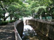 夏の神田川