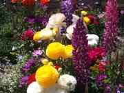 ~春の花~♪~