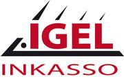 MWS-Buchhaltungsservice, Igel Inkasso, Zwickau