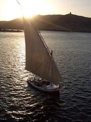 Feluke auf dem Nil (08.04.2008)