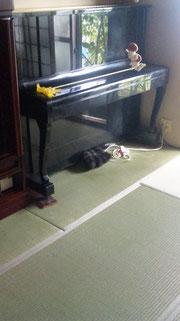 ピアノのお部屋、表替