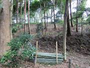 竹の伐採路半ば