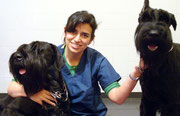 Renata Diniz Instructor Certificate Program in Canine Physical Rehabilitation