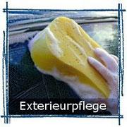 Autopflege Exterieur Felgenreiniger, Insektenentferner usw.