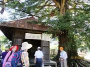 浅原薬師堂(欄間彫刻がスゴ~イ)