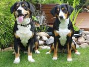Otis und Sita