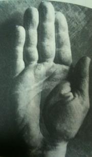 芸術界の巨匠ピカソの手相