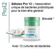 Probiotiques PRO12 vers une santé plus solide, le centre de notre santé se trouve au niveau du ventre - Aloe Vera Santé Beauté - LR Health and Beauty