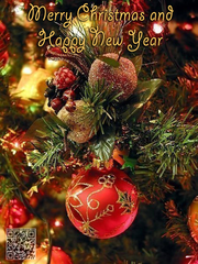 Anton Hrechaniuk Merry Christmas and Happy New Year